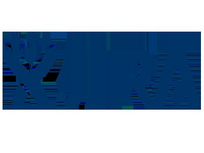 Companies-Jira